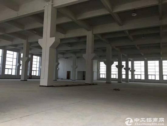 惠东本地房东4500平方独院厂房招租可明包