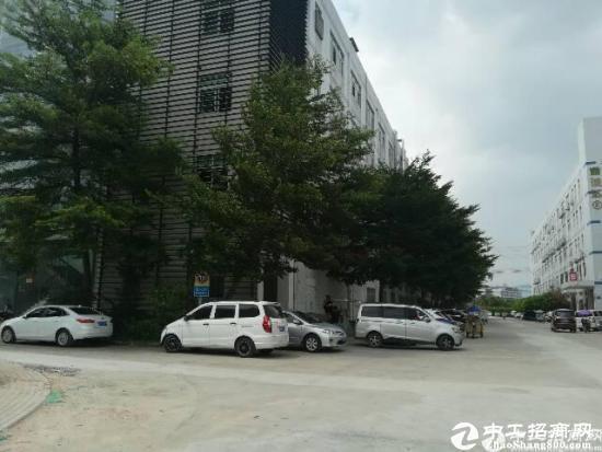 高薪园区,带精装修(有红本)楼上2000平方厂房