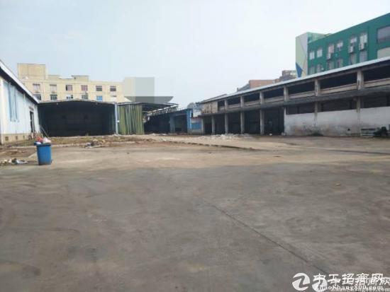 西丽动物园附近独院钢构厂房7000平方,可以分租