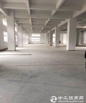 石美独院2400平方厂房八成新出租