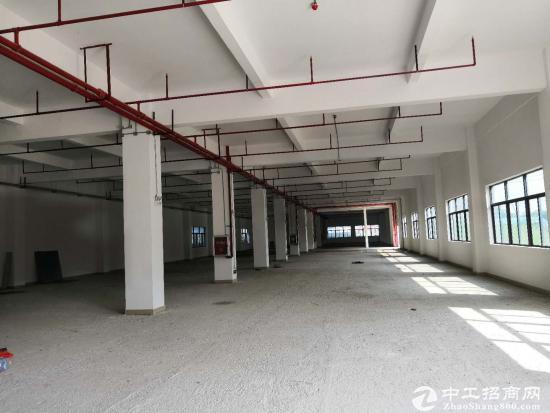 坪山新出原房东独院独栋厂房单层面积2860平 可分租