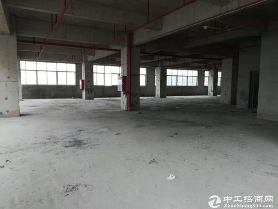 大朗镇建筑1750 ㎡产业园分层国有红本双证厂房出售可以按揭
