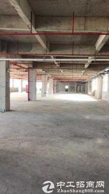 松山湖镇建筑1750 ㎡产业园分层国有红本双证厂房出售可以按揭