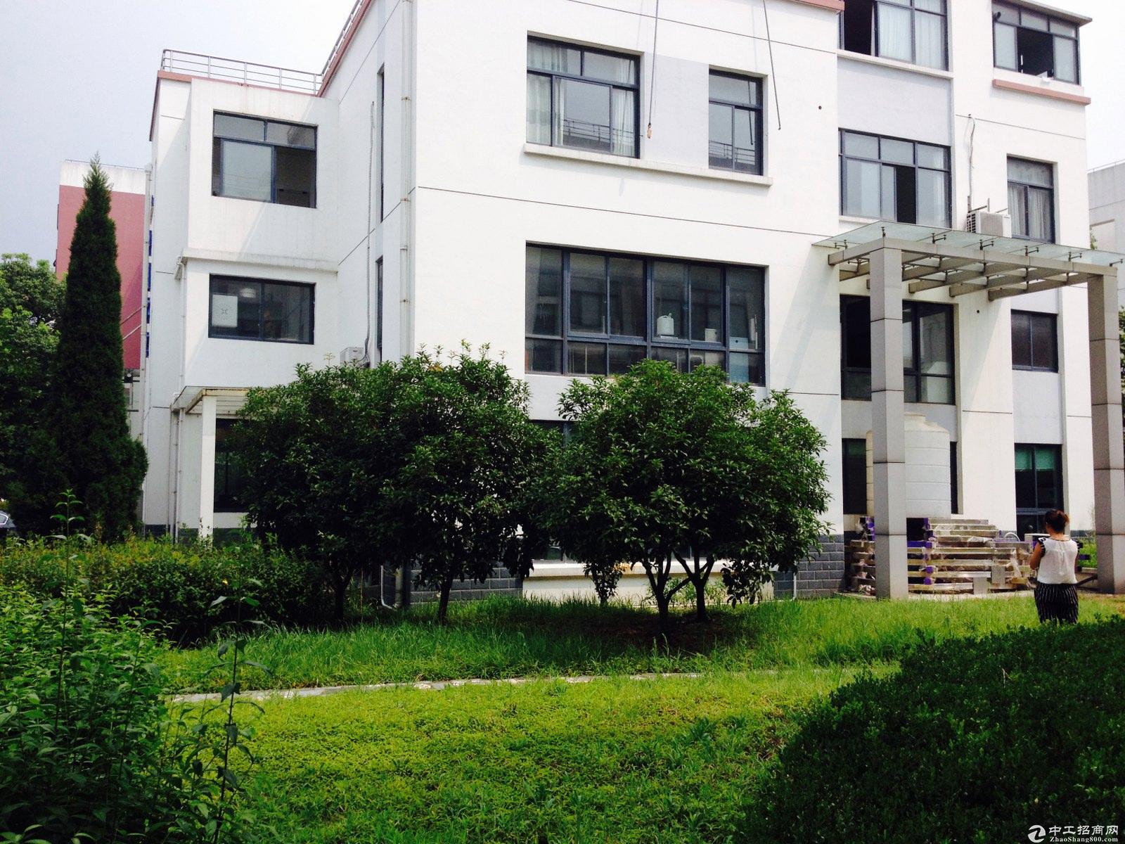 松江新桥独栋977平方有装修办公总部50年工业厂房出售-图4
