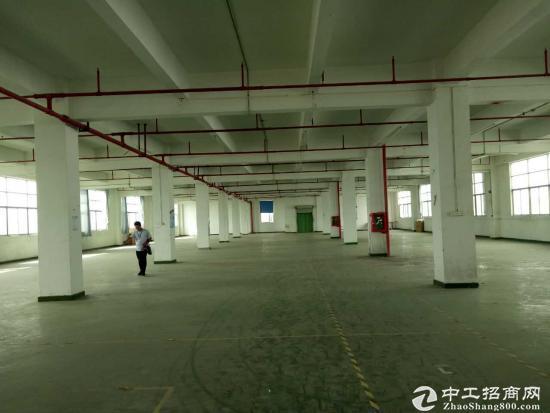 龙岗坪地楼上1000平精装修厂房实际面积出租
