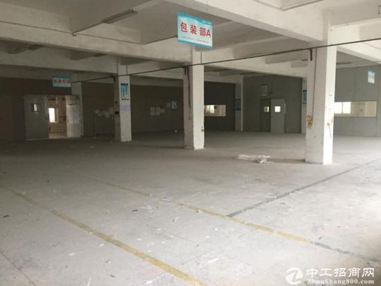 龙岗同乐一楼厂房1350平米招租,租23大小可分