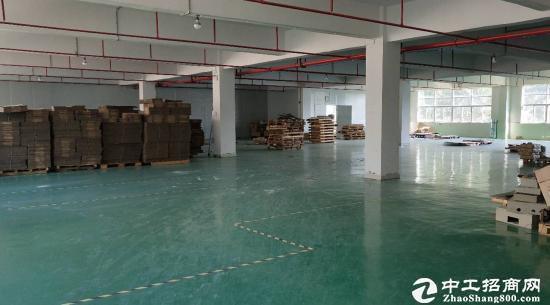 坪山大工业区原房东红本厂房2000平招租,实际面积