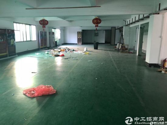坪山深汕路边新出楼500平米厂房16元出租可分