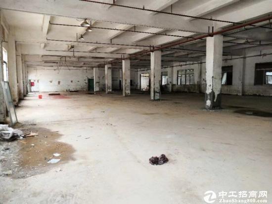 龙岗坪地新出标准厂房一楼650平出租,高度6米