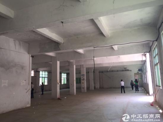 原房东850㎡单一层铁皮房独门独院,全新