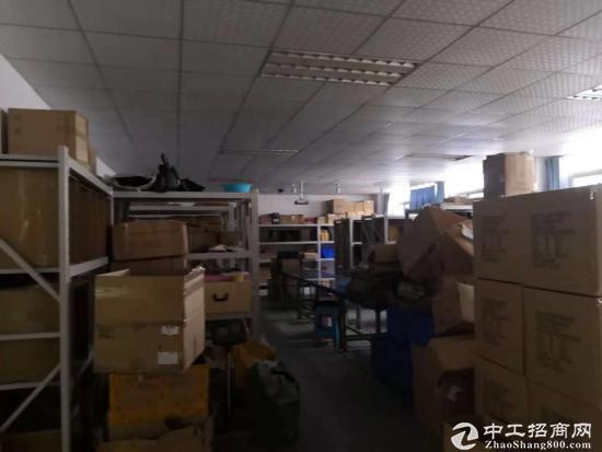 龙岗高新区原房东 带红本厂房5楼2200平,带精