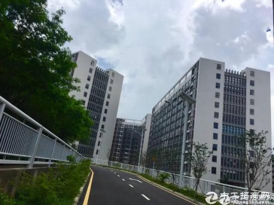 深圳龙岗国际低碳城整栋32100平米全新红本厂房