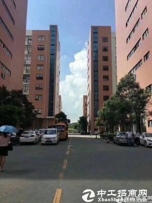 石岩塘头新出红本楼上3200平方厂房出租
