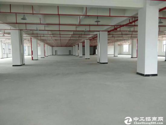 东莞桥头新出12000平 村委厂房出售 8年回