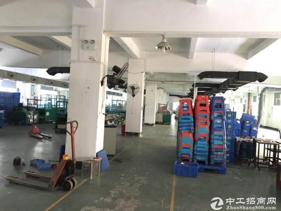 坪地新出标准厂房一楼1500平米厂房出租,可分租