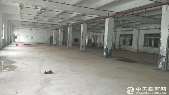 龙岗坪地龙岗大道边独院标准重工业厂房5400平米