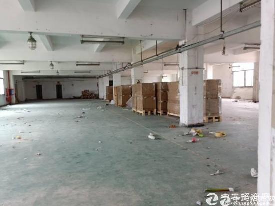龙岗坪山新出标准厂房一楼450平出租,高度6米