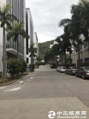 横岗 横坪公路边红本厂房楼上分租1400平米