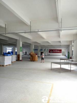 龙岗五联新出1楼1300平米厂房出租精装修