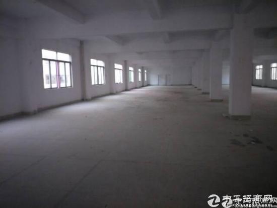 龙岗同乐标准厂房1200平方带办公室精装