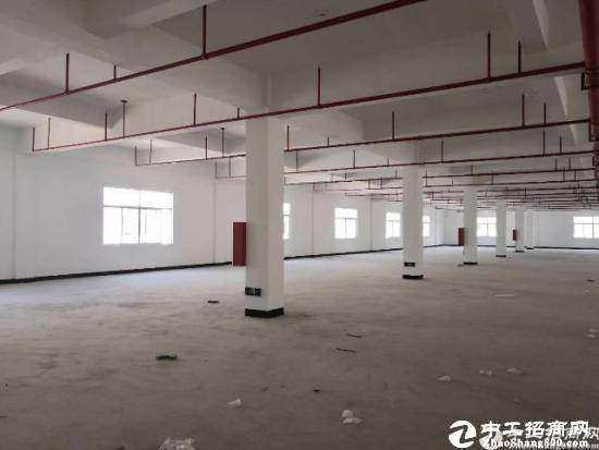 龙岗南联新出一楼厂房3000平标准厂房原房东出租