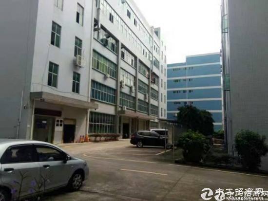 坪地带红本厂房楼上3600平米出租层高4.5米