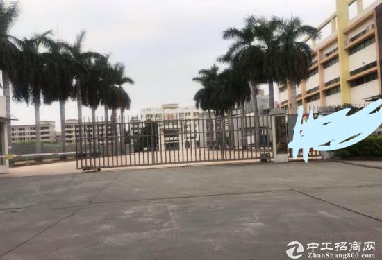 东莞常平国有证厂房出售