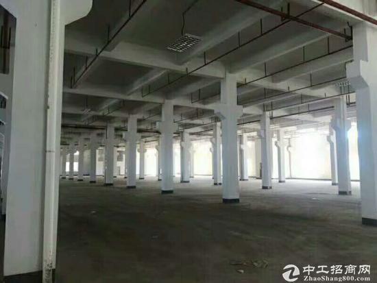 坪地新出精品独院标准厂房1200平米出租