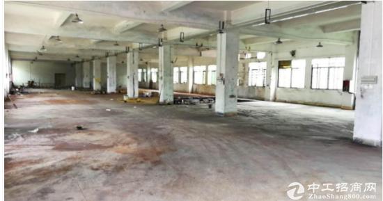 三联标准一楼厂房700平方业主急租