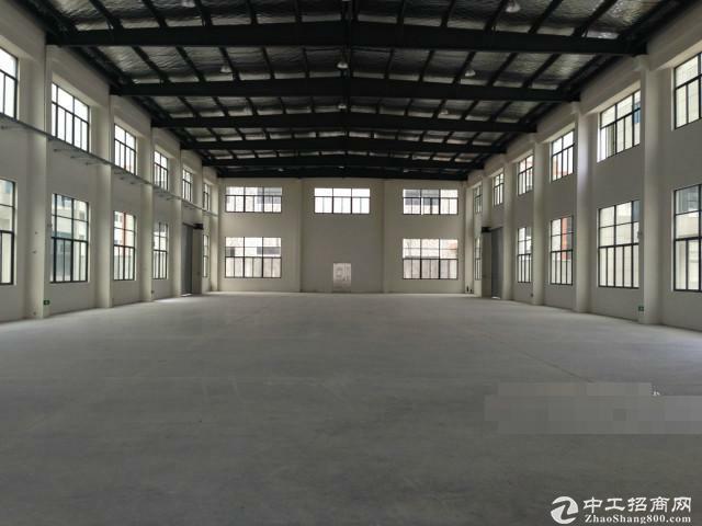 松江车墩独栋1900平米单层厂房出租高11米
