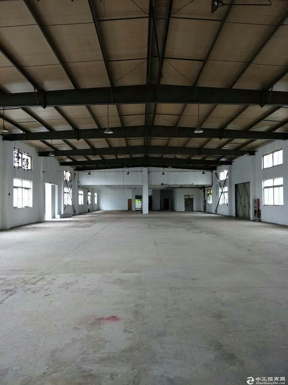 松江车墩720平米全单层厂房出租位置好-图2