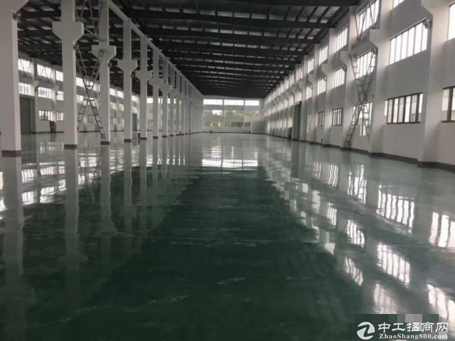 松江大房东独院7611平米独栋单层厂房有行车-图2