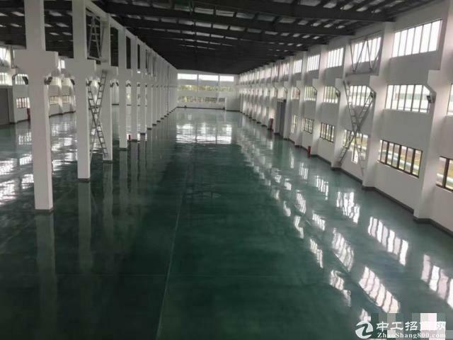 松江大房东独院7611平米独栋单层厂房有行车-图3