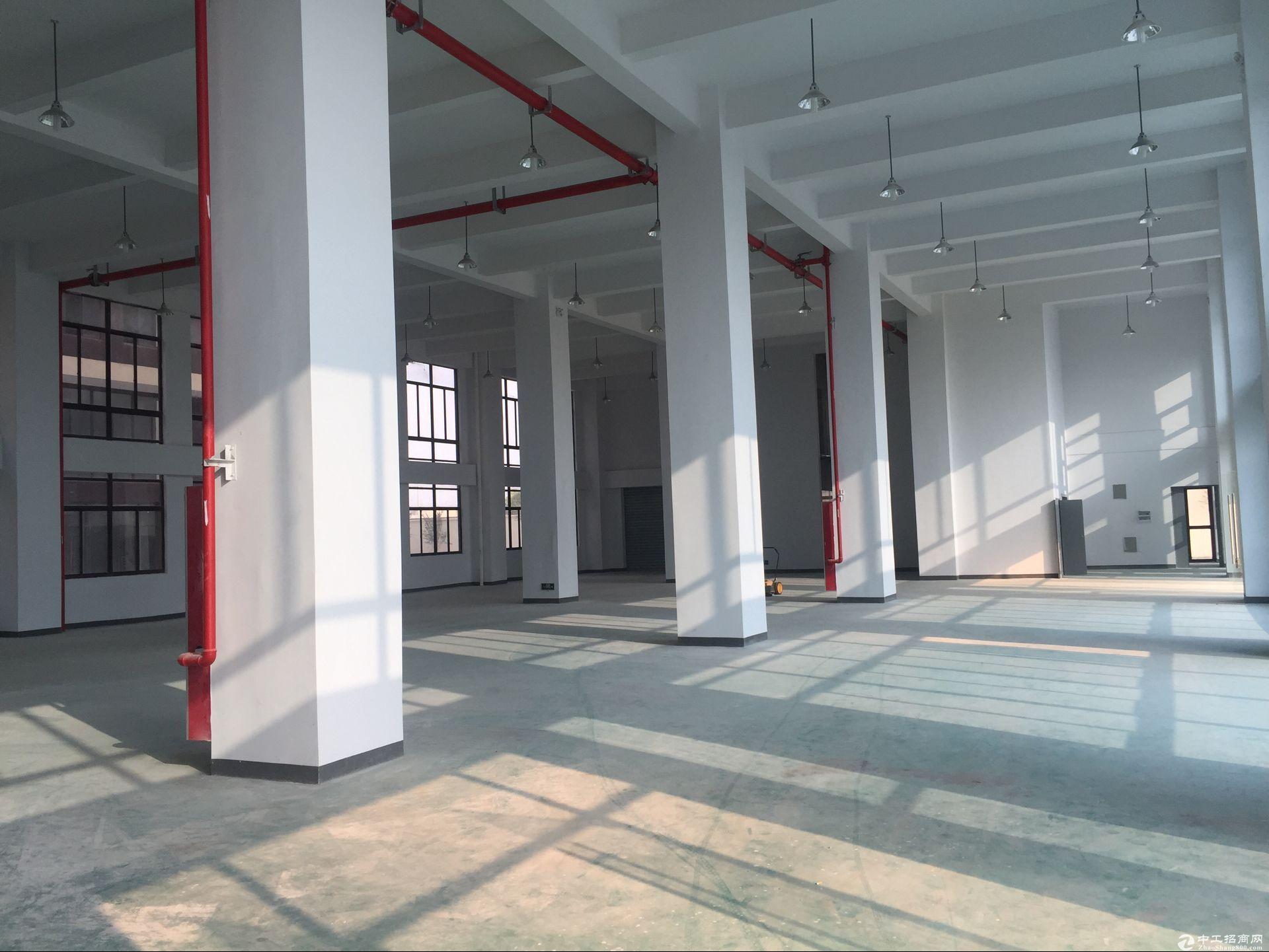 松江工业区全新独栋5600平米厂房配电超大-图3