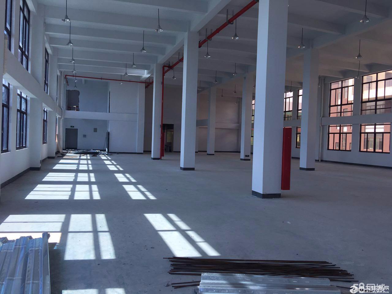 松江工业区全新独栋5600平米厂房配电超大-图5