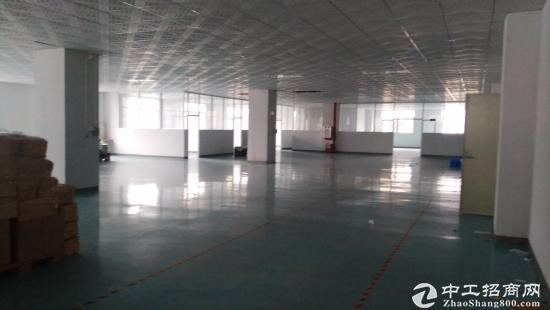 沙头3楼带装修520平方厂房出租