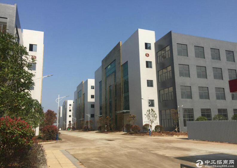出租出售武汉阳逻开发区全新标准框架厂房