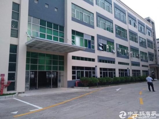 平湖华南城交易中心附近原房东独门独院8000平方出租