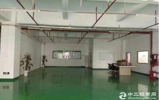 塘下涌一楼厂房500平出租带装修地坪漆,价格实惠