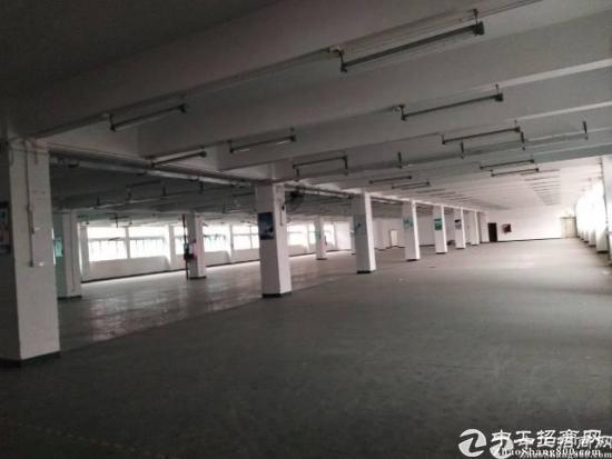南山西丽大型工业区新出1700平厂房招租