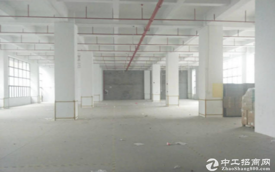 塘厦一楼1500平带红本厂房仓库出租,可分租