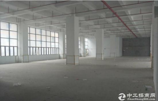 塘厦一楼1500平带红本厂房仓库出租,可分租-图2