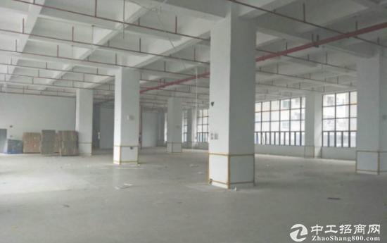 塘厦一楼1500平带红本厂房仓库出租,可分租-图4
