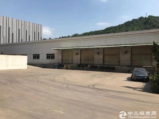 横岗主干道钢构仓库2350平.装卸货平台滴水6.8米