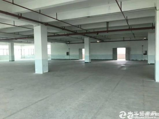 光明新区原房东红本厂房24000平租可做学校、数据库。