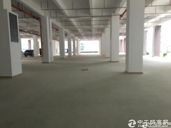 深圳龙岗区占地6199㎡,建筑9396㎡独门独院厂房出售-图2