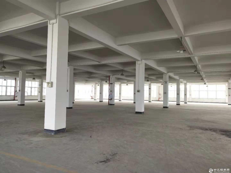 茶园新区2300平标准厂房出租