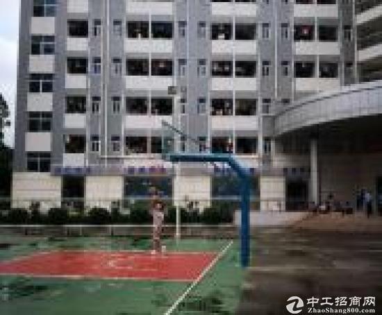 (出租) 布吉新出原房东红本一楼厂房2600平可分租使用率高