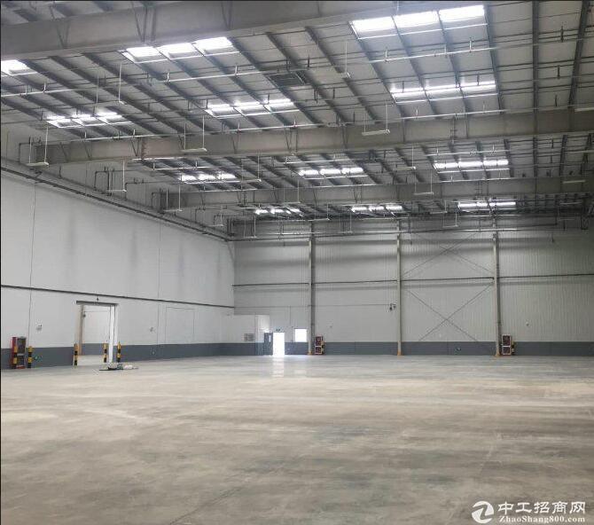 黄陂横店紧缺丙一类仓库招租,单层钢结构