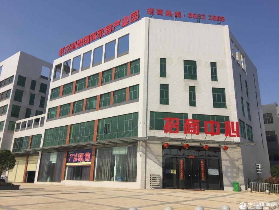 出租阳逻开发区全新标准框架厂房